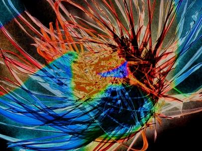 3156_colorHairDay__risingRims_joelBowers_digitalPainting