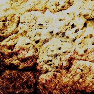 3492_cookies2__risingRims_joelBowers