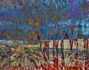 3980_foliageTreeHighway_joelBowers.RisingRims