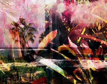 3983_layersHawaiianCrop_joelBowers.RisingRims